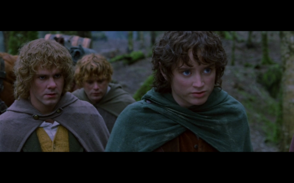 The Lord of the Rings The Fellowship of the Ring - 691