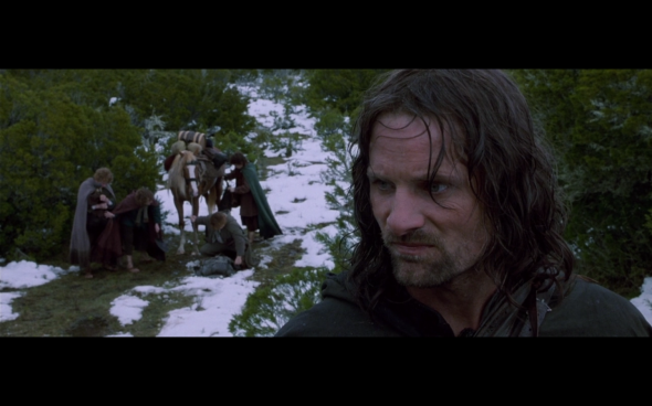 The Lord of the Rings The Fellowship of the Ring - 695