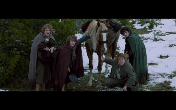 The Lord of the Rings The Fellowship of the Ring - 697