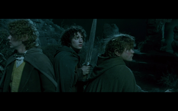 The Lord of the Rings The Fellowship of the Ring - 725