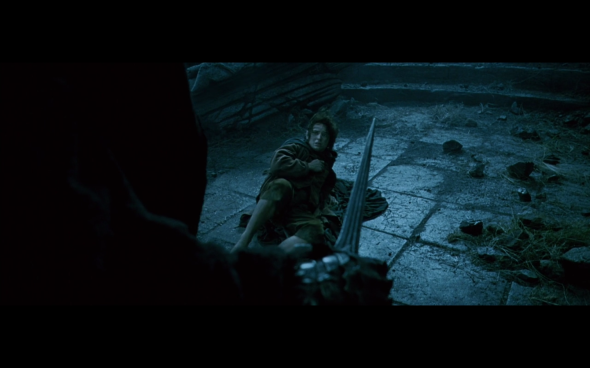 The Lord of the Rings The Fellowship of the Ring - 736