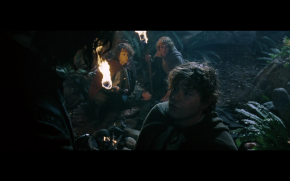 The Lord of the Rings The Fellowship of the Ring - 802