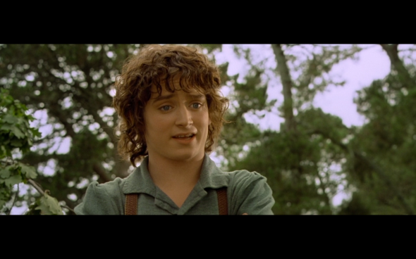 The Lord of the Rings The Fellowship of the Ring - 91