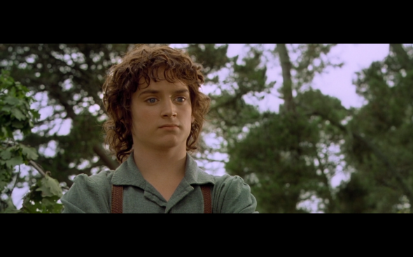 The Lord of the Rings The Fellowship of the Ring - 95