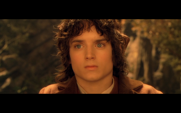 The Lord of the Rings The Fellowship of the Ring - 977