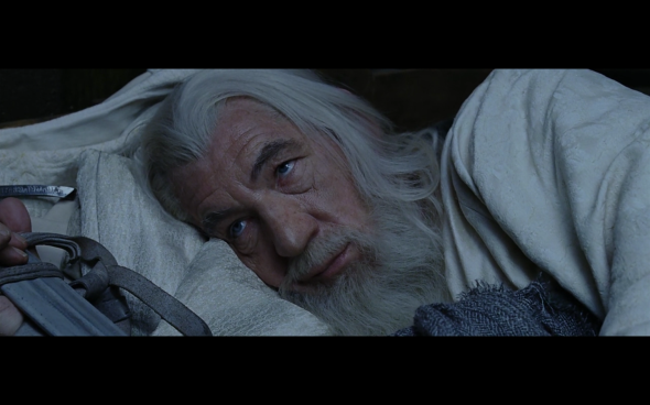 The Lord of the Rings The Return of the King - 108