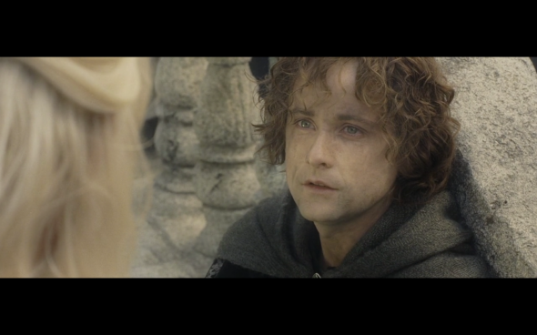 The Lord of the Rings The Return of the King - 1081