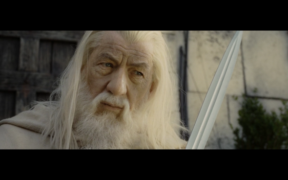 The Lord of the Rings The Return of the King - 1082