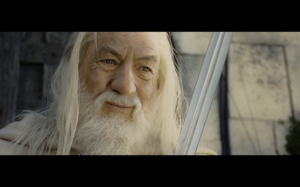 The Lord of the Rings The Return of the King - 1085
