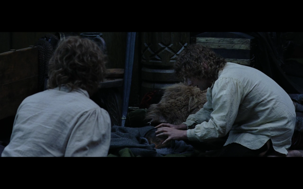 The Lord of the Rings The Return of the King - 113