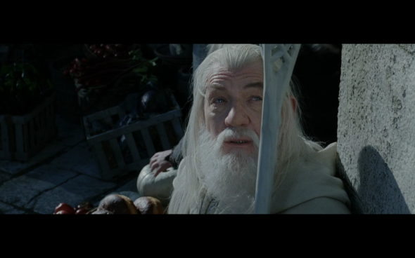 The Lord of the Rings The Return of the King - 299