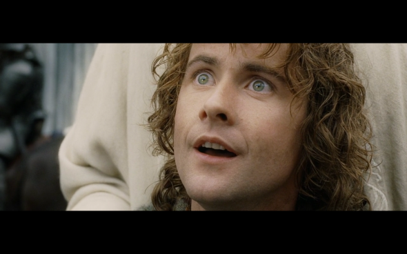 The Lord of the Rings The Return of the King - 381