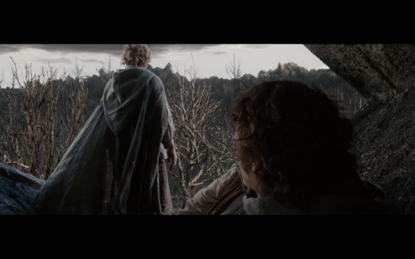 The Lord of the Rings The Return of the King - 41