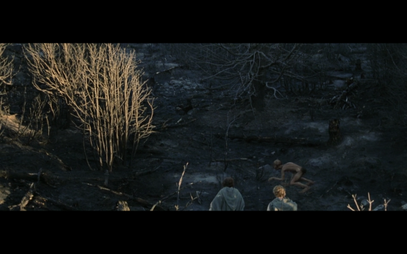 The Lord of the Rings The Return of the King - 43