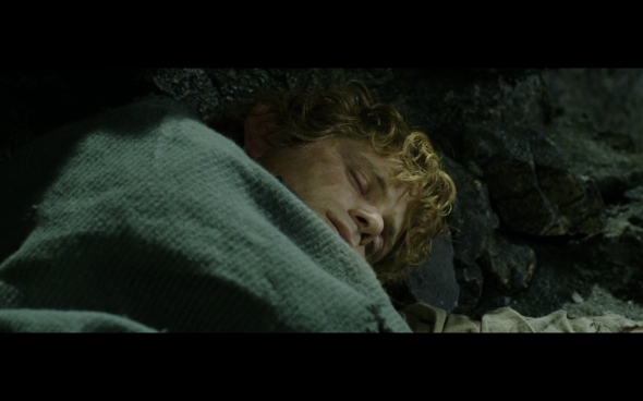 The Lord of the Rings The Return of the King - 431