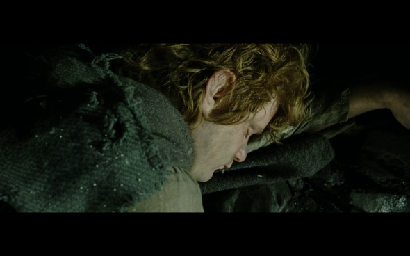 The Lord of the Rings The Return of the King - 438