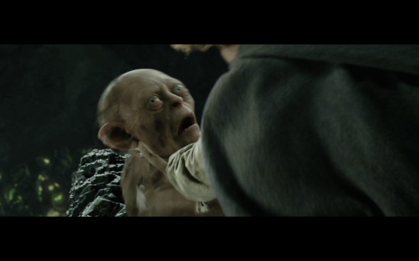 The Lord of the Rings The Return of the King - 462