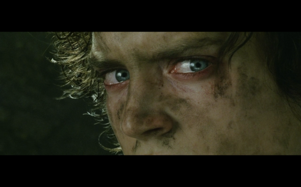 The Lord of the Rings The Return of the King - 468