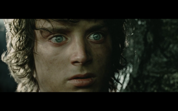 The Lord of the Rings The Return of the King - 474