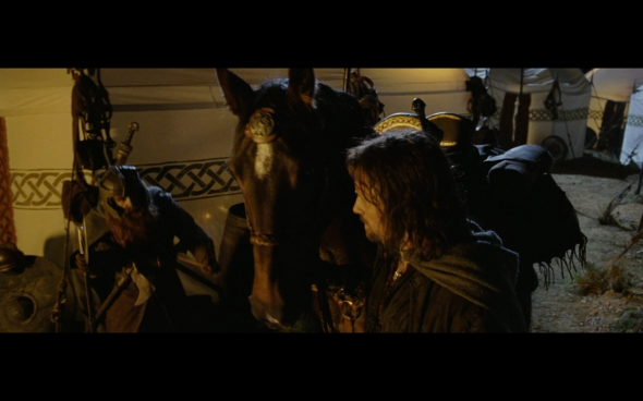 The Lord of the Rings The Return of the King - 601