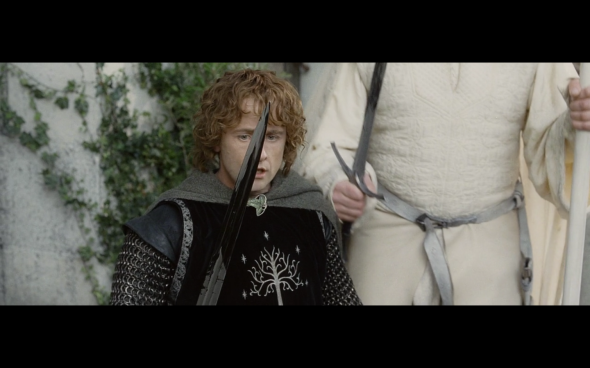 The Lord of the Rings The Return of the King - 772