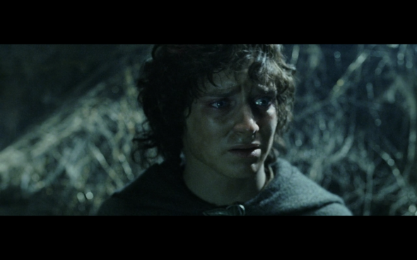 The Lord of the Rings The Return of the King - 791