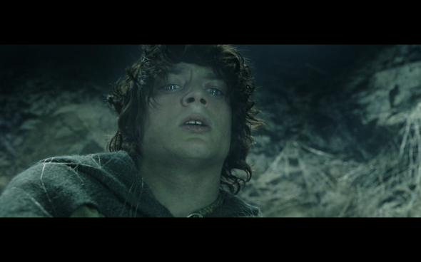 The Lord of the Rings The Return of the King - 818