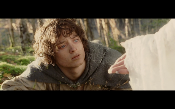 The Lord of the Rings The Return of the King - 836