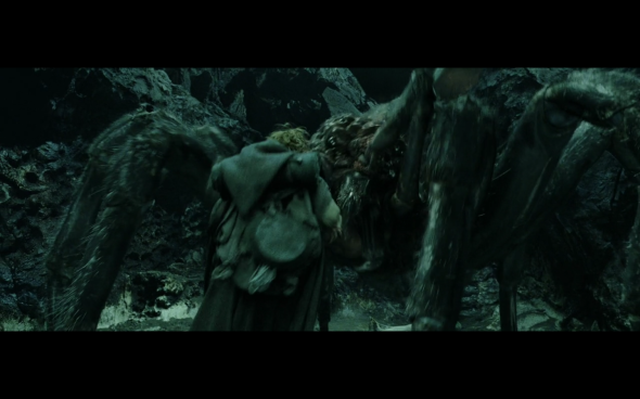 The Lord of the Rings The Return of the King - 900
