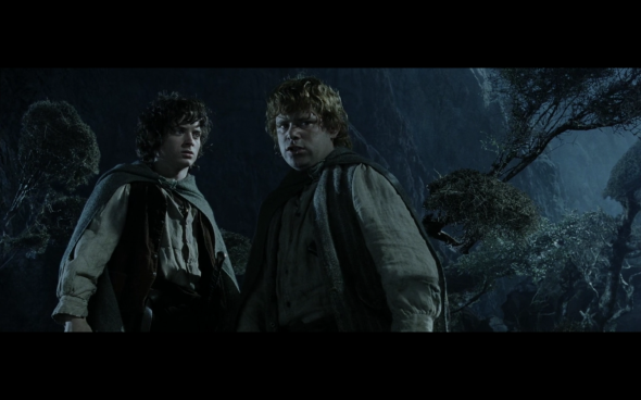 The Lord of the Rings The Return of the King - 96