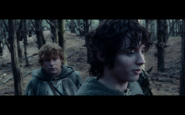 The Lord of the Rings The Two Towers - 1612