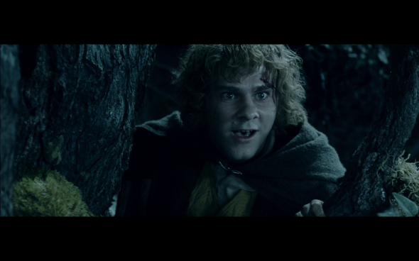 The Lord of the Rings The Two Towers - 325