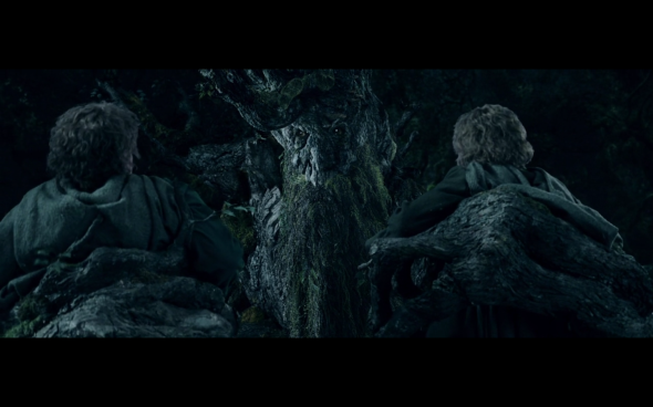The Lord of the Rings The Two Towers - 336