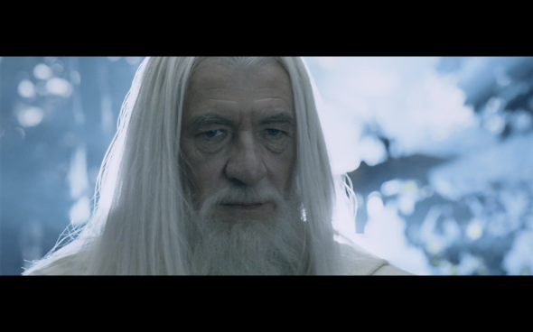 The Lord of the Rings The Two Towers - 441