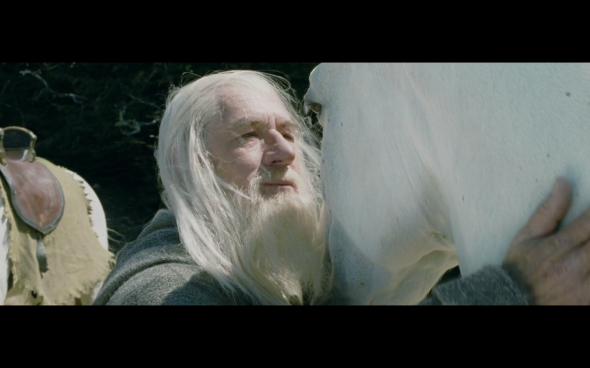 The Lord of the Rings The Two Towers - 485