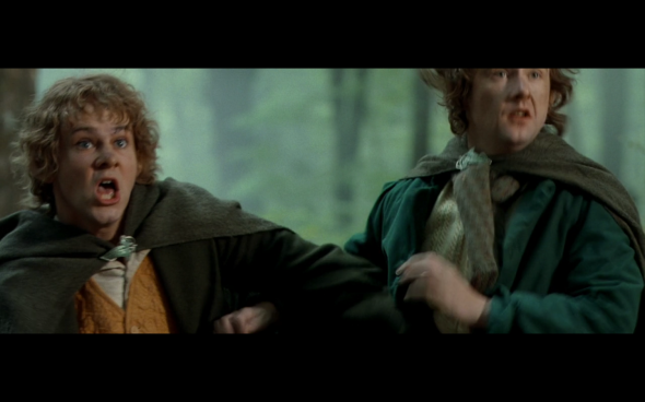 The Lord of the Rings The Fellowship of the Ring - 1718