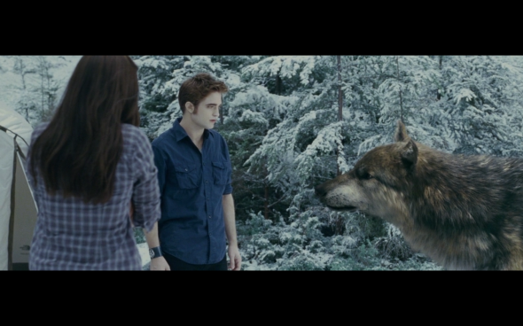 The Twilight Saga Eclipse - 815