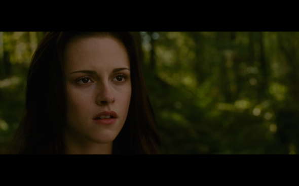 The Twilight Saga New Moon - 1078