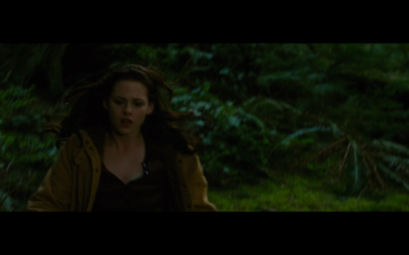 The Twilight Saga New Moon - 233