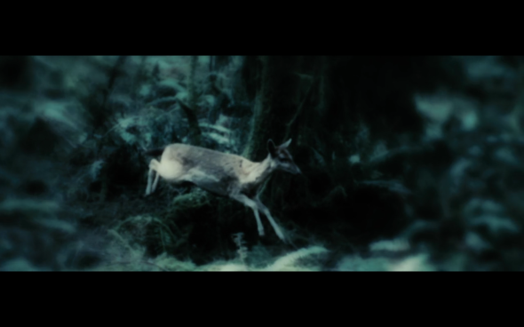 Twilight - 1214