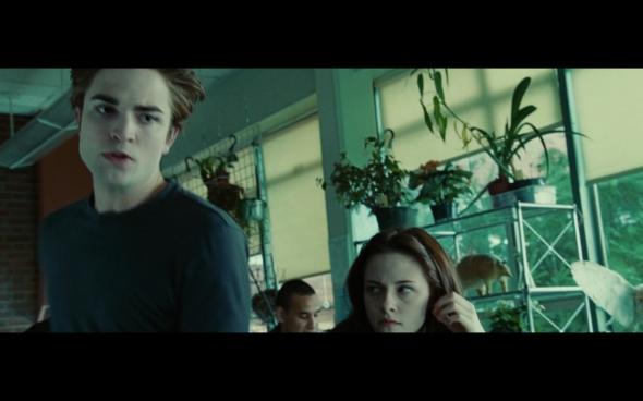 Twilight - 203