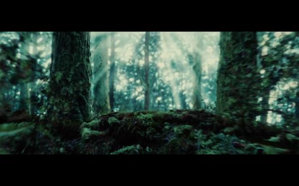 Twilight - 24