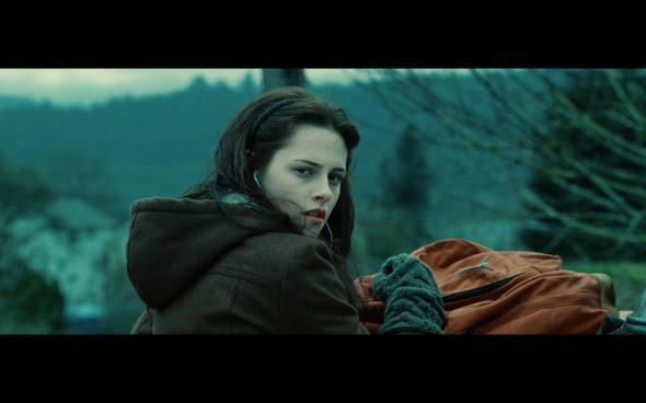 Twilight - 314