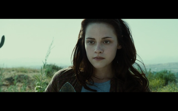 Twilight - 33