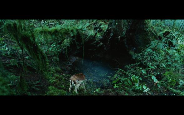 Twilight - 4
