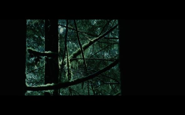 Twilight - 481