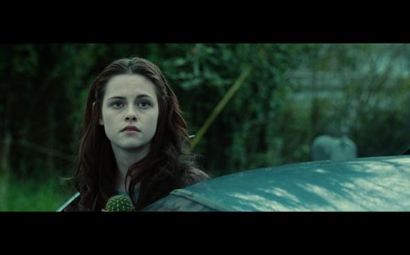 Twilight - 54