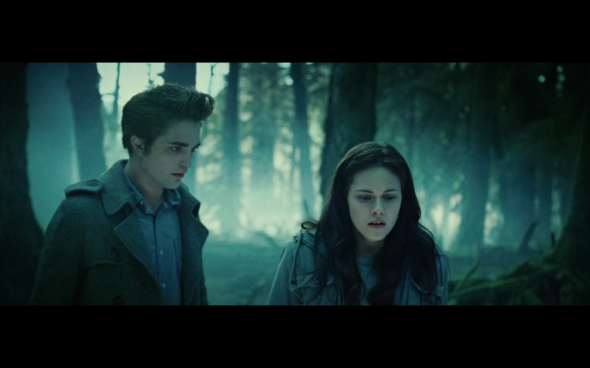 Twilight - 660