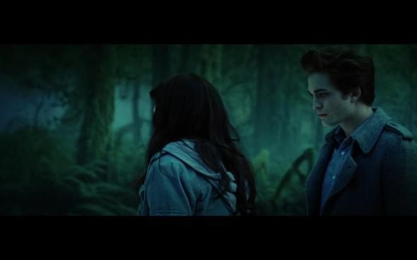 Twilight - 667