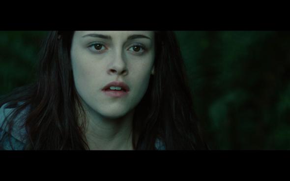 Twilight - 696